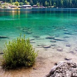 pogled na zeleno modro vodo jezera iz obale