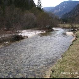 reka Radovna v zgornjem toku